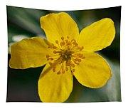 Yellow Wood Anemone Tapestry