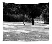 Young Boys Playing Cricket In A Park Near Delhi Zoo Tapestry