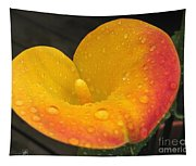 Zantedeschia Named Flame Tapestry