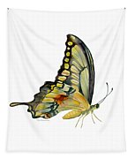 104 Perched Swallowtail Butterfly Tapestry by Amy Kirkpatrick