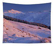 Sierra Nevada Tapestry