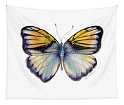 14 Pieridae Butterfly Tapestry