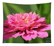 Zinnia From The Candy Mix Tapestry