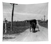 1920s 1930s Amish Man Driving Buggy Tapestry