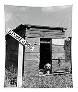 1950s Cocker Spaniel Puppy In Doghouse Tapestry