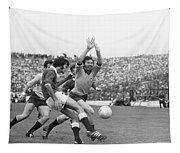 1974 All Ireland Football Final Tapestry