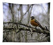 1st Robin Of Spring Tapestry