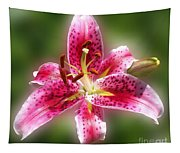 A Lilly For You Tapestry