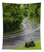 After The Rain Tapestry