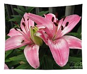 Asiatic Lily Named Vermeer Tapestry