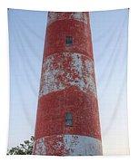 Assateague Island Lighthouse Tapestry