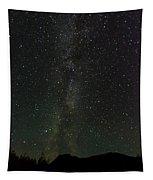 Aurora Borealis, Kantishna, Alaska Tapestry