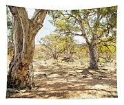 Australian Outback Oasis Tapestry