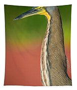 Bare-throated Tiger Heron Tigrisoma Tapestry
