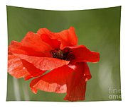 Beautiful Poppies 3 Tapestry