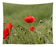 Beautiful Poppies 4 Tapestry