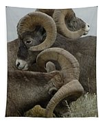 Big Horn Sheep  Tapestry