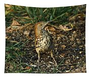 Brown Thrasher Tapestry