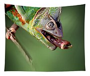 Chamaeleon Tapestry