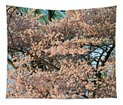 Cherry Blossoms In Pink And Brown Tapestry