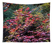 Colorful Leaves On A Tree Tapestry