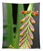 Crocosmia Named Lucifer Tapestry