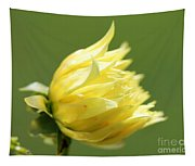 Dahlia Named Kelvin Floodlight Tapestry