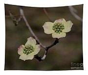 Dogwood Blossoms Tapestry