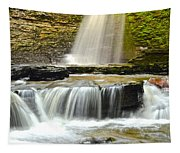 Eagle Cliff Falls Tapestry