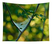 Early Fall Net Tapestry
