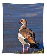 Egyptian Goose Tapestry