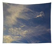 Evening Sky Tapestry