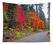 Fall's Splendor Tapestry