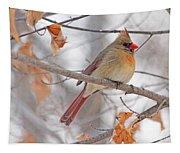 Female Cardinal In Winter Tapestry