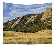 Flatirons With Golden Grass Boulder Colorado Tapestry