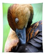 Fulvous Whistling Duck Tapestry