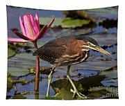Green Heron Photo Tapestry