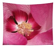 Hibiscus Moscheutos Named Luna Pink Swirl Tapestry