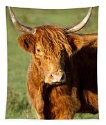 Highland Cow Tapestry