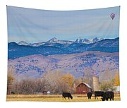 Hot Air Balloon Rocky Mountain Country View Tapestry