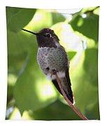 Hummingbird Hangout Tapestry