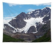 Ice And Snow Tapestry