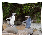 Juvenile Nz Yellow-eyed Penguins Or Hoiho On Shore Tapestry