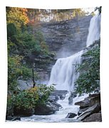 Kaaterskill Falls Square Tapestry