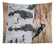 Lesser Spotted Woodpecker Tapestry