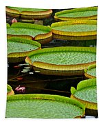 Lilly Pads Tapestry