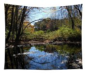 Mansfield Hollow Lake Tapestry