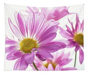 Mums Flowers Against White Background Tapestry