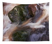 Old Mill Canal Tapestry