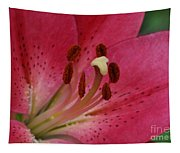 Pink Lilly Tapestry
